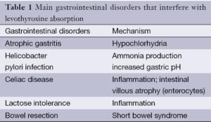 Hipotiroidismo, levotiroxina y enfermedades gastrointestinales 1
